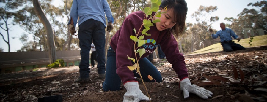 Student plants tree for Earth Day